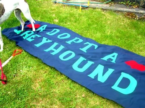 June 2 banner